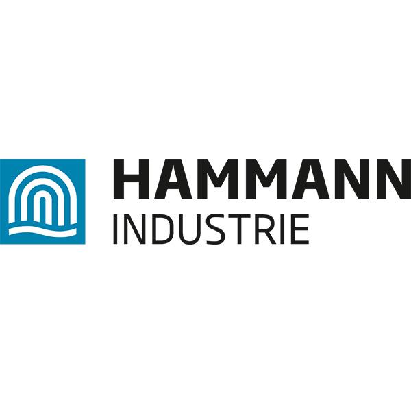 Logo Hamman industrie